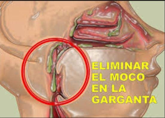 La flema es una enfermedad de mucosidad espesa y pegajosa, esto se introduce en la garganta por el cilios, que se encuentran en las vías respiratorias inferiores.