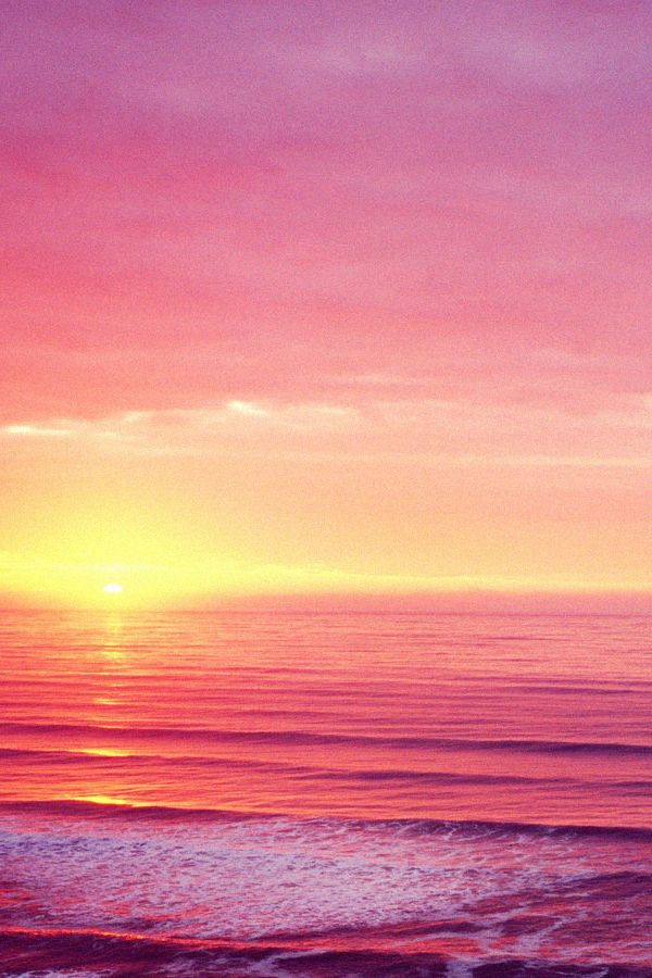 we live by the sun. we feel by the moon: Pink Sunsets, Inspiration, Purple Sunsets, Color, The Ocean, Lost Quotes, Beautiful Places, Travel, Beaches Sunsets