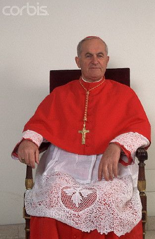 a description of the roman catholic cardinal joseph bernardin Very nice and forward looking grammar school in the far south suburbs of  chicago opened in the year 2000 (it was the first new catholic school opened in  35.