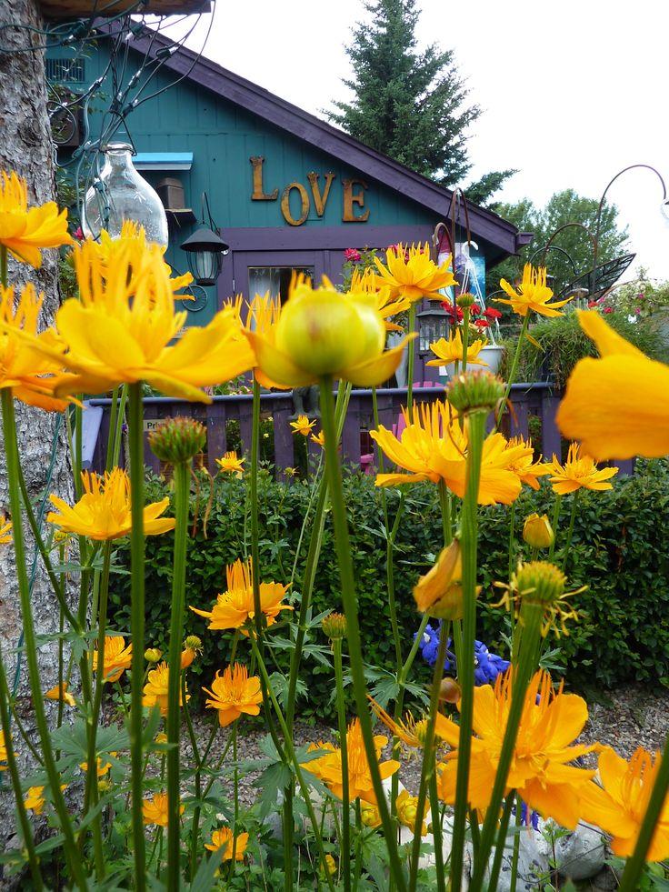 Private Garden outside Calgary, AB. copyright Jacqueline Auvigne
