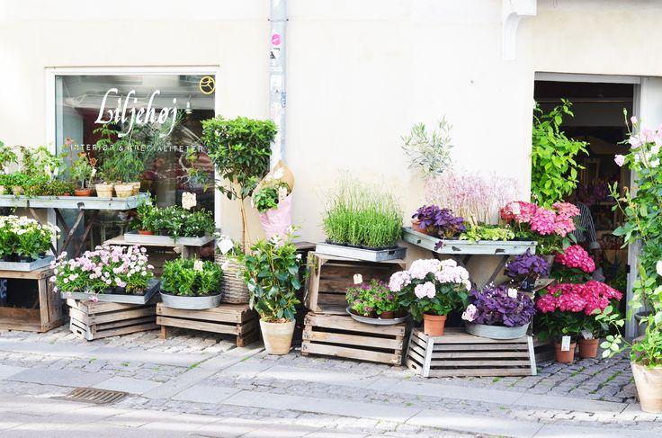 Around Copenhagen, flowers market