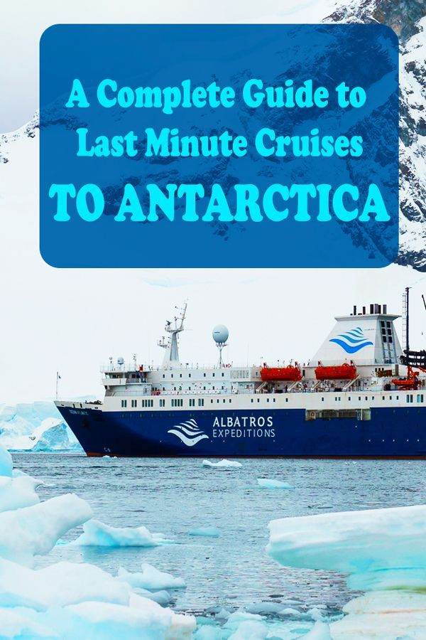 A Complete Guide On Travelling To Antarctica And How To Book A
