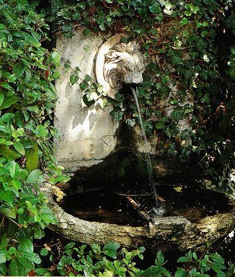 I love hidden fountains that are old and grown over like this. I love the sound of trickling water.