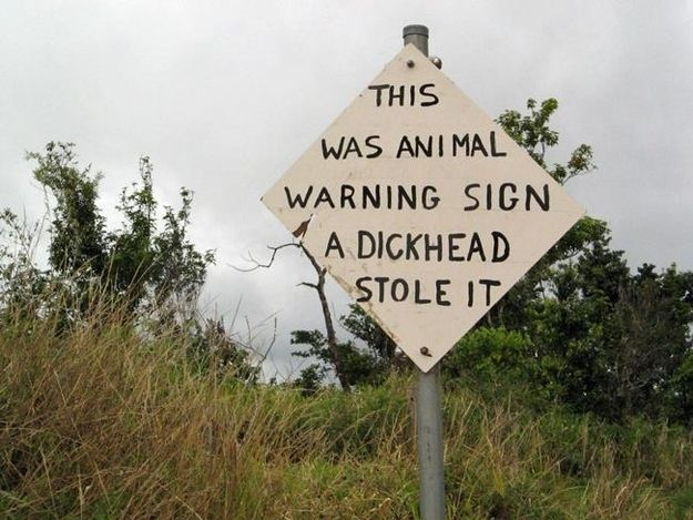 <b>Some of these signs are inherently funny, others are improved by funny animals.</b> Either way, how can you go wrong? (Pro-tip: you can't!)