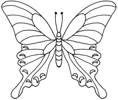 Best Butterfly Templates Images On   Butterflies