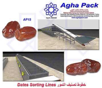 Dates Sorting Lines