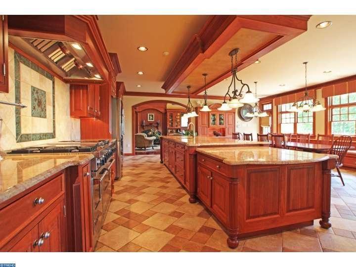 Luxury Home Amenities 87 best luxury homes images on pinterest | luxury homes, lehigh