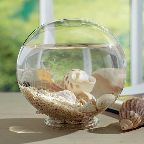 Tidal Pool Glass Globe - for the beach room | Home ...
