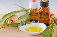 Cómo hacer jabón de eucalipto. El eucalipto es una planta que cuenta con múltiples propiedades útiles para la piel. En especial, sus principales virtudes nos ayudan a cuidar la piel y tratar problemas dermatológicos como granitos, ...