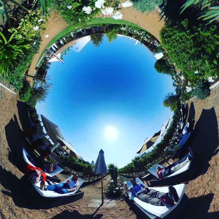 Chill out with wine at casas del bosque! #winetasting tour! #vino #wine #casasdelbosque #winery #chile #winelover #sauvignonblanc #tinyplanet #rollworld #theta360 #theta360official #littleplanet #photoshpere #livingplanetapp #ricohtheta #360camera #smallplanet #spherical #roundworlds #tinyplanetbuff #360panorama #360photography