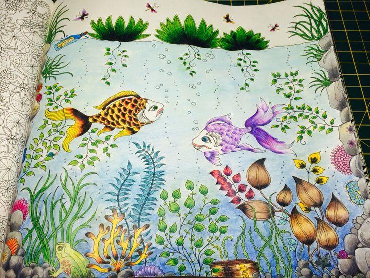 26 Best Fish Secret Garden Peixe Jardim Secreto Images On