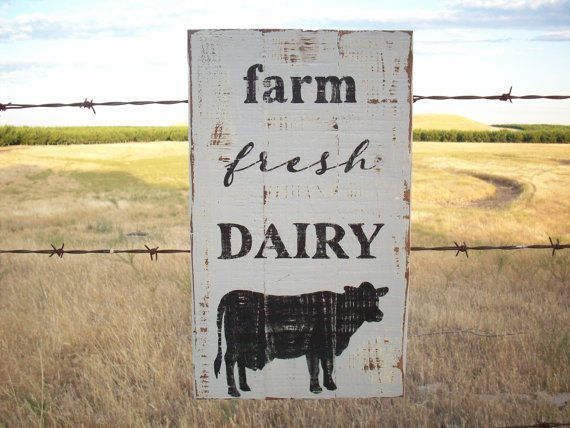 Farm fresh dairy country kitchen sign is first painted an antique white with a top coat of light grey. The lettering and the cow is painted