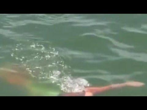 În largul coastelor Australiei a fost filmată o sirenă - Portalul vrajitoarelor