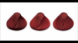Resultado de imagen de gama de colores de tintes de pelo