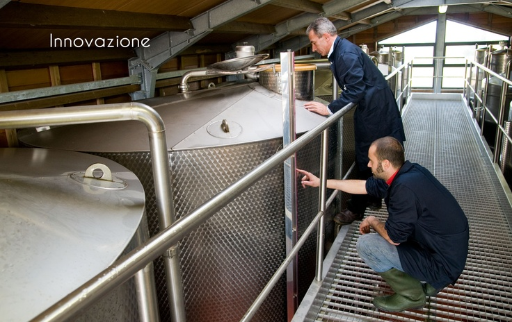 Our oenologists at work! #umbertocesari #wine #winery #italy