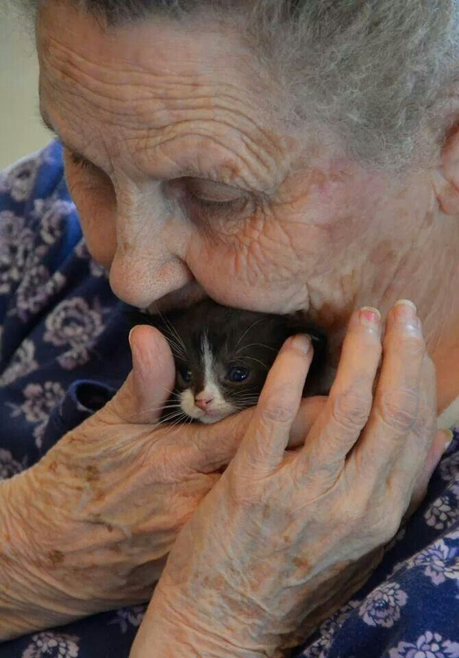 Mittens Visits the Nursing Home ● This photo is a good reminder of how comforting and soothing pets can be for the elderly.  If your loved one is in a nursing home, visits from pets are extremely meaningful and beneficial to the geriatric patient.  Petting a cat or dog can actually lower a person's blood pressure! -LRE
