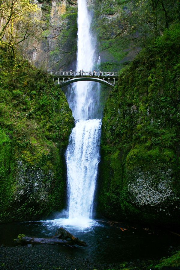 Multnomah Falls In The Beautiful Columbia Gorge We Have A