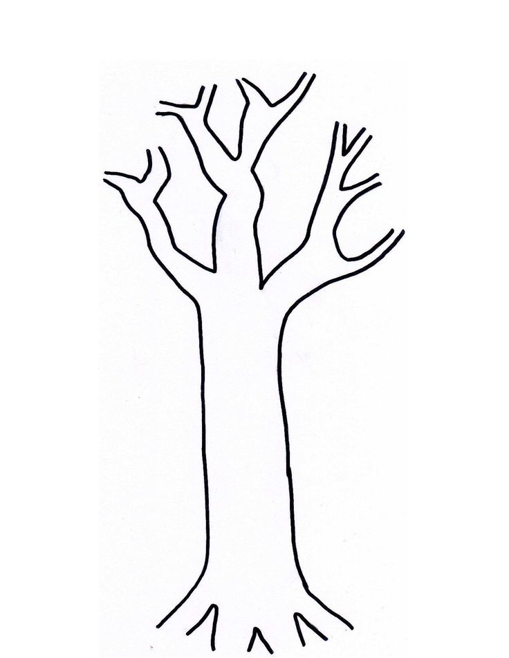 tree cork utensil painting - Birch Tree Branches Coloring Pages