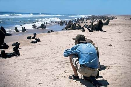 Wetlands and Deserts  http://www.afrizim.com/Places/Namibia/Self-Drive-Tours/#
