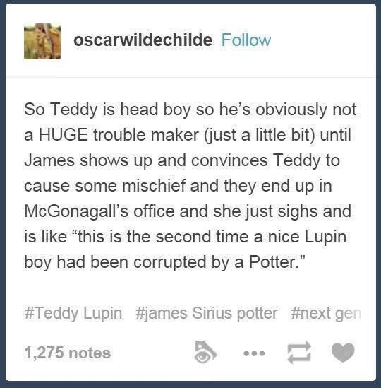 """the second time a nice Lupin boy has been corrupted by a Potter."" xD"