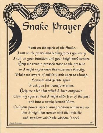 """Spirit Totem Animals:  Snake Prayer. We are ending our year of the Snake now. No wonder there was so much action in """"shedding"""" our skins of the past this last year..powerful energy.."""