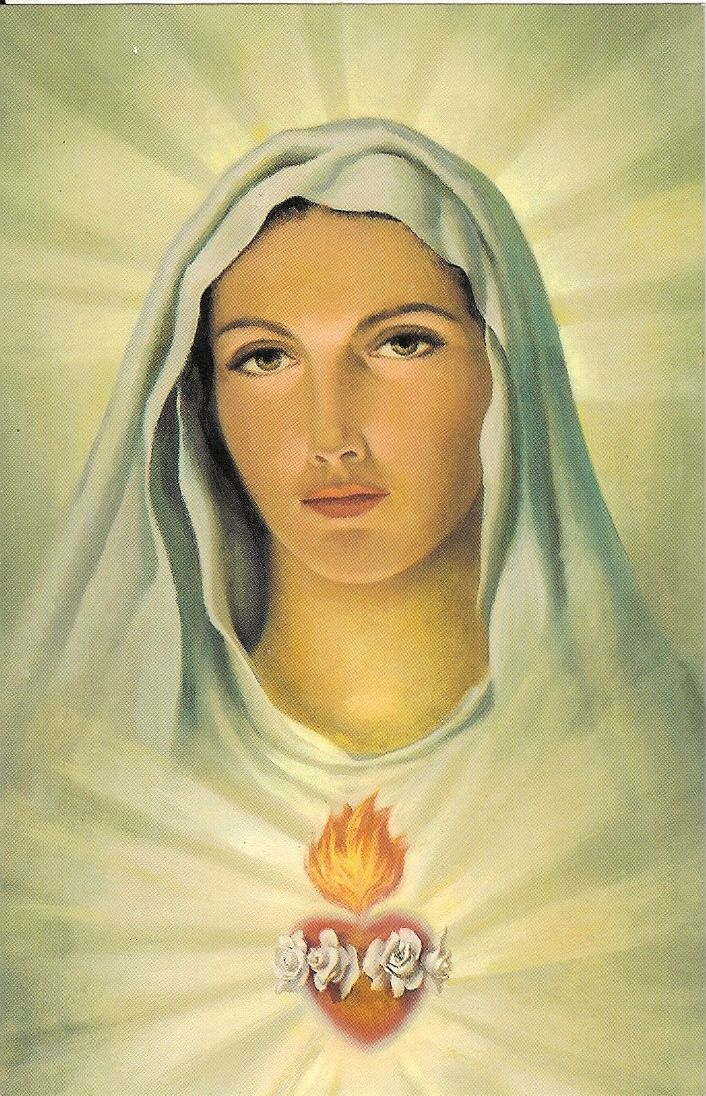 Hail Mary full of Grace, the Lord is with thee. Blessed are thou among women and blessed is the fruit of thy womb Jesus. Holy Mary Mother of God, .