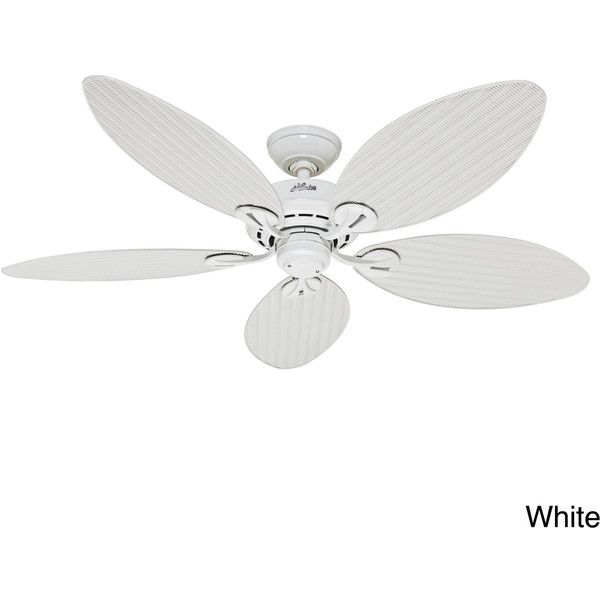 Hunter Fan Bayview 54-inch 5-palm Leaf Blades Ceiling Fan ($169) ❤ liked on Polyvore featuring home, outdoors, outdoor decor, white, outdoor ceiling fans, white outdoor ceiling fan, outdoor patio decor, outdoor garden decor and outside ceiling fans