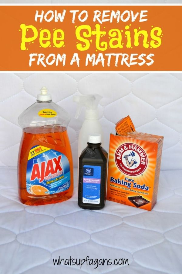 DIY Tutorial on how to remove pee stain from mattress using natural ingredients! It's an easy, quick, and effective cleaning solution. Be rid of the smell too! by claudine