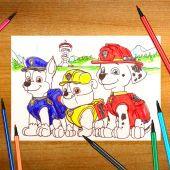 PAW Patrol: Cachorros Paleontólogos | Nick Jr. Latinoamérica