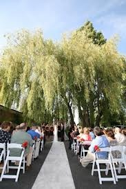 The Weeping Willow Tree at Blue Ribbon Cooking
