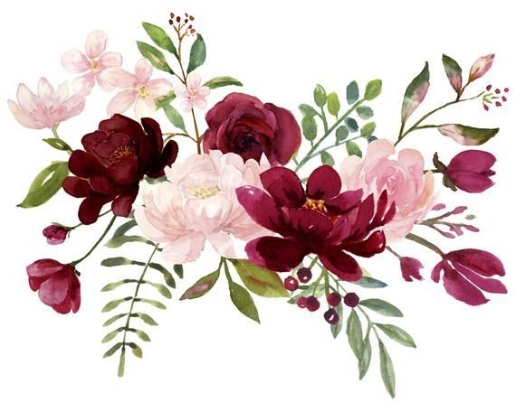 Blush And Burgundy Flowers Watercolor Clipart Collection Bu