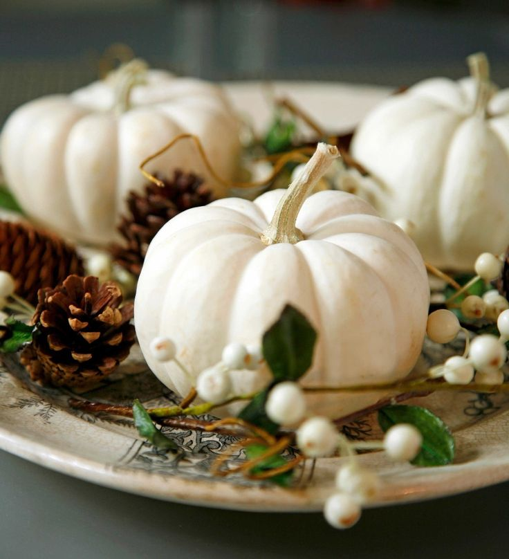 Best 25 white pumpkin centerpieces ideas on pinterest for Pale perfection paint