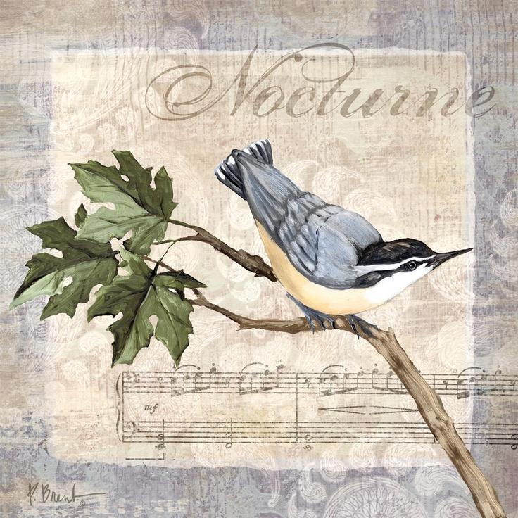 Allegro-Songbird IV