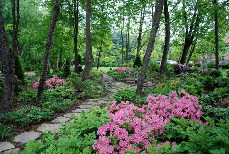411 best images about gardening in north carolina on pinterest