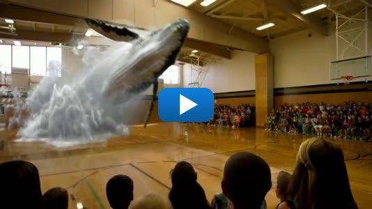 Une baleine sort du plancher de cette école - FrancoisCharron.com
