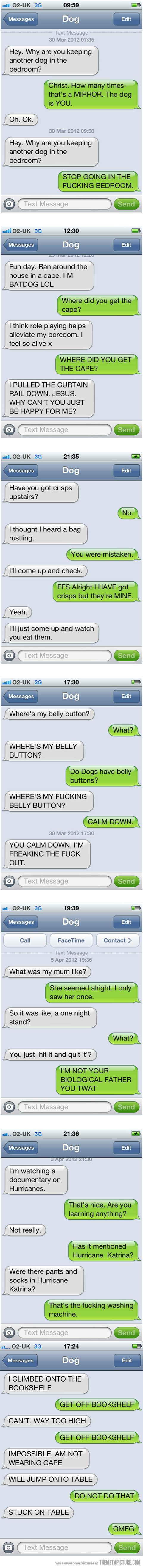 Texts from my dog… I don't have one, but pet owners will appreciate this.