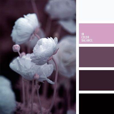 color lila, colores pálidos, combinación de colores para diseño, elección del color para hacer una reforma, lila oscuro, matices muy oscuros de color rosado, negro y blanco, rosado y blanco, rosado y negro, tonos marrones y rosados.