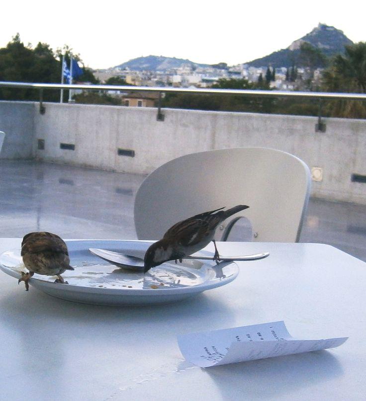 Acropolis museum taratsa restaurant