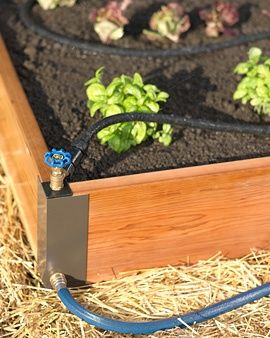 """Irrigação plantas  wehearthomedesign: """"  Neaten up your soaker hoses - use quick releases for easy winter pickup """""""
