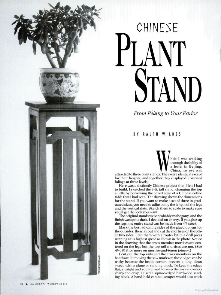 f0c949bdb657dd277be588656cff804a chinese plants plant stands
