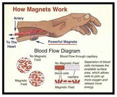 How magnetic bracelets work. It's all about blood circulation through a magnetic field. # therapy_magnets #Magnets_for_therapy #biomagnetips