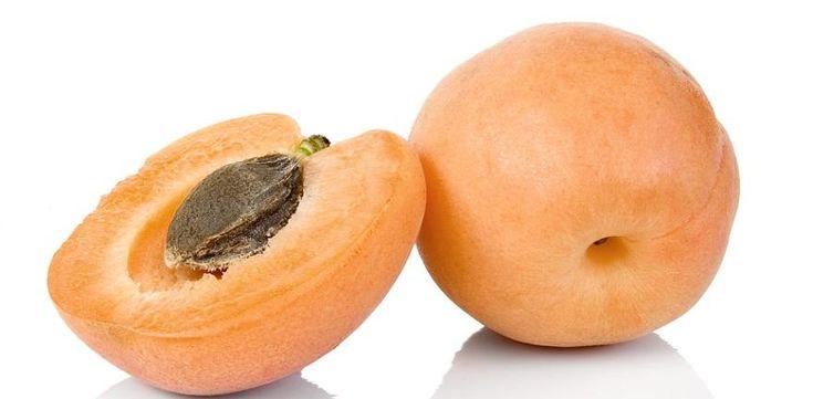 Cyanidforgiftet av aprikoskjerneekstrakt | NIFAB | Aktuelt | NIFAB.no