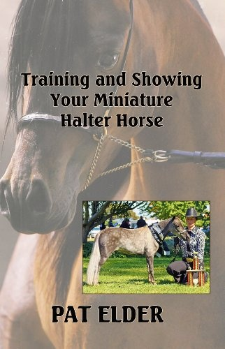 25 Best Ideas About Miniature Horse Barn On Pinterest