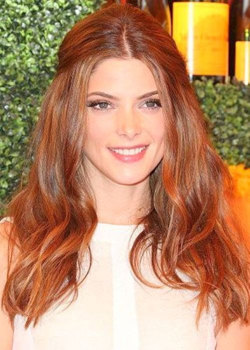 Color Ideas For Natural Redheads : 26 best highlights color images on pinterest