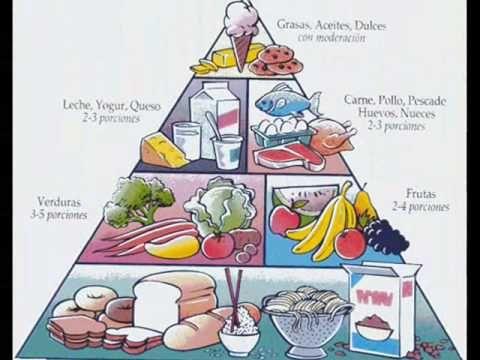 ▶ la piramide alimenticia - YouTube