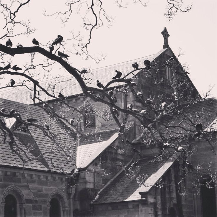 St John's Parramatta; Australia's oldest place of Christian Worship. Foundation stone laid 1799