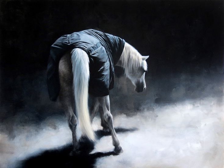 White Horse - oil painting, created by Magdalena Dymańska | Equestrian Art