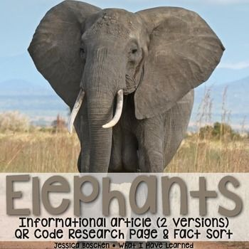 Elephants: Informational Article, QR Code Research Page & Fact Sort