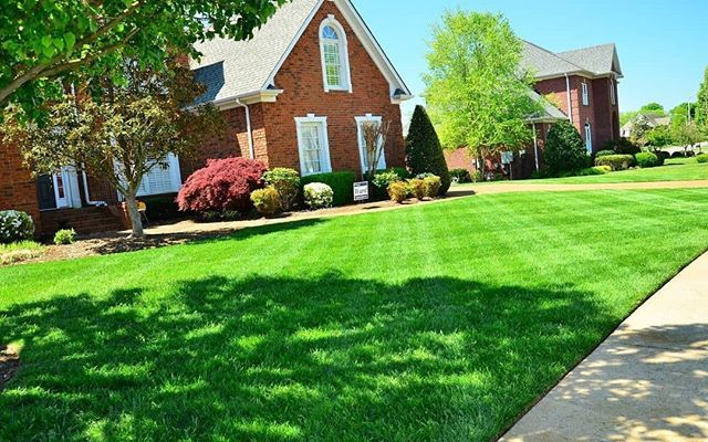 The Benefits Of Professional Commercial Residential Landscaping