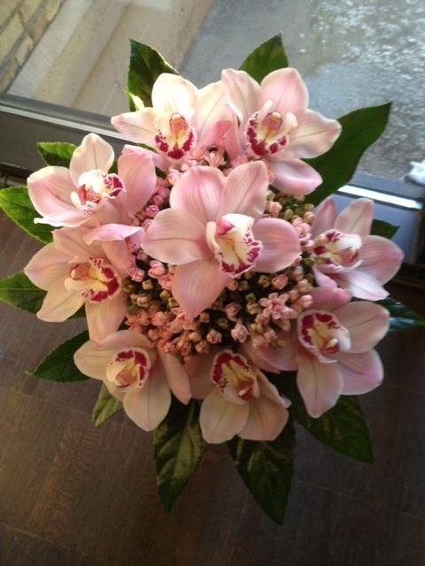Simple And Stunningpink Cymbidiums Encircle An Bed Of Bouvardia Wedding FlowersHand BouquetCymbidium OrchidsBridal